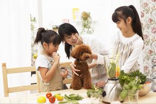 キッチンにいる母親と娘と犬の写真素材 [FYI02547922]
