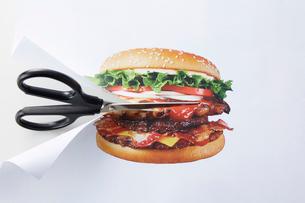 ハンバーガーが印刷された紙をはさみで切る様子の写真素材 [FYI02548840]