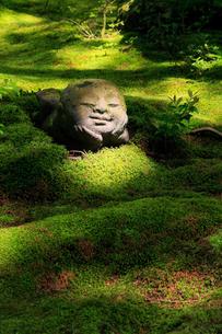 5月新緑,大原三千院のわらべ地蔵の写真素材 [FYI02556001]