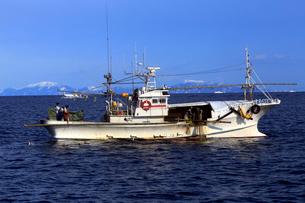 2月 羅臼港沖の漁船 -冬の北海道-の写真素材 [FYI02556135]