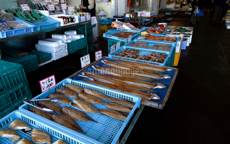 11月 魚市場-冬の北陸-の写真素材 [FYI02556307]