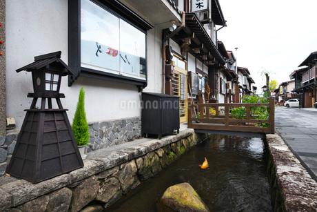 瀬戸川と白壁土蔵街の写真素材 [FYI02557100]