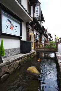 瀬戸川と白壁土蔵街の写真素材 [FYI02557469]