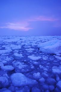 野付半島の朝の流氷の写真素材 [FYI02557478]