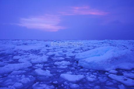 野付半島の朝の流氷の写真素材 [FYI02557645]