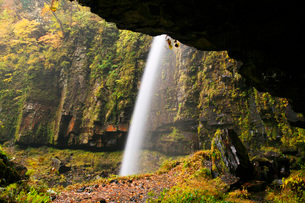 阿弥陀ヶ滝の秋の写真素材 [FYI02557870]