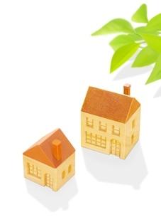 2棟の木の家とポトスのイラスト素材 [FYI02559377]