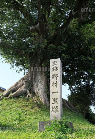 野村一里塚の写真素材 [FYI02560122]