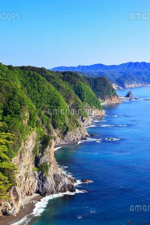 鵜ノ巣断崖の写真素材 [FYI02560251]