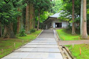 中尊寺の金色堂の写真素材 [FYI02560404]