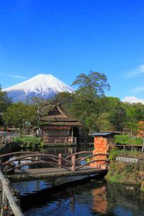 忍野八海と富士山の写真素材 [FYI02560487]