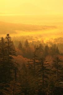 三国峠から望む紅葉と朝焼けの雲海の写真素材 [FYI02561538]