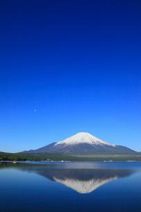 山中湖畔から望む富士山の写真素材 [FYI02561594]