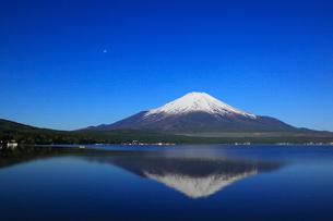 山中湖畔から望む富士山の写真素材 [FYI02561934]
