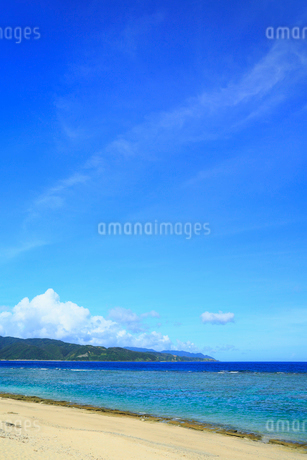 奄美大島 大浜海浜公園より望む東シナ海の写真素材 [FYI02562107]