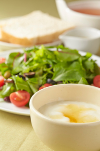 ベビーリーフのサラダとヨーグルトの写真素材 [FYI02562895]