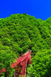 黒部峡谷鉄道・トロッコ電車と快晴の空の写真素材 [FYI02563999]