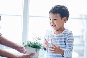植物に水をあげる男の子と女性の写真素材 [FYI02566090]