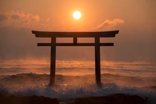 夜明けの鳥居と海の写真素材 [FYI02566197]