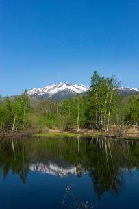新緑の一ノ瀬園地と乗鞍岳の写真素材 [FYI02567452]