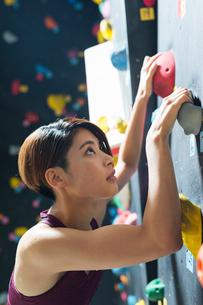 ボルダリングをする若い女性の写真素材 [FYI02568702]