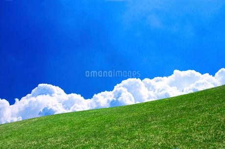 草原と青空の写真素材 [FYI02569488]