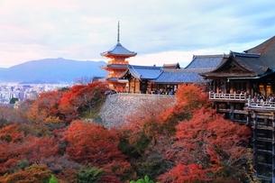 夕焼けの清水寺に紅葉の写真素材 [FYI02570224]