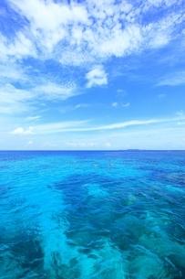 沖縄 西表島 サンゴ礁と青い海の写真素材 [FYI02570447]