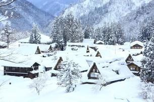 五箇山 雪の相倉合掌集落の写真素材 [FYI02570633]