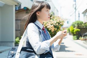 女子高生 スマートフォン 操作の写真素材 [FYI02570691]