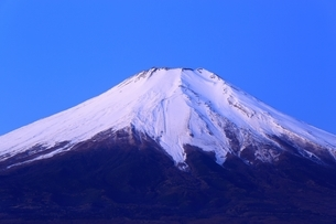 山中湖より望む早朝の富士山の写真素材 [FYI02570801]