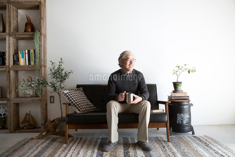 ソファでくつろぐシニア男性の写真素材 [FYI02570867]