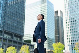 シニアのビジネスマンの写真素材 [FYI02570973]