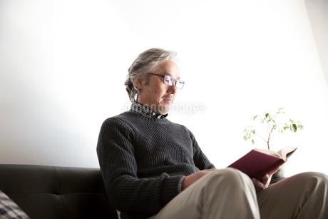 ソファで読書するぐシニア男性の写真素材 [FYI02571002]