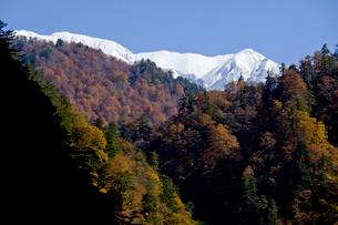 秋の黒部峡谷の写真素材 [FYI02571437]