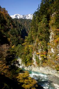 秋の黒部峡谷の写真素材 [FYI02571634]