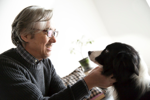 愛犬を可愛がるシニア男性の写真素材 [FYI02571722]