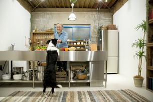 愛犬の前で料理をするシニア男性の写真素材 [FYI02571825]
