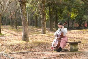 公園でチェロを弾く20代女性の写真素材 [FYI02574184]