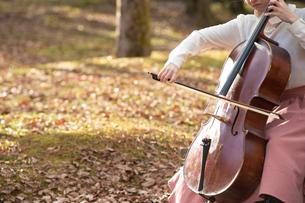 公園でチェロを弾く20代女性の写真素材 [FYI02574302]