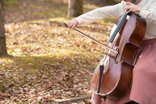 公園でチェロを弾く20代女性の写真素材 [FYI02574411]