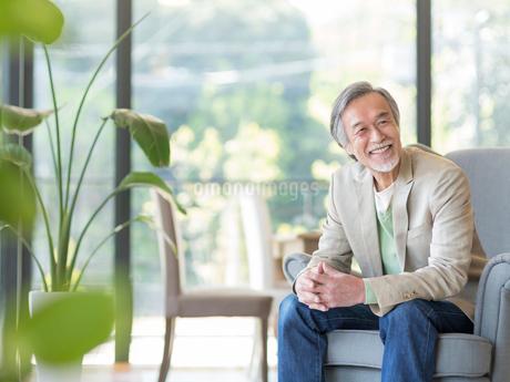 ソファに座るシニア男性の写真素材 [FYI02585544]