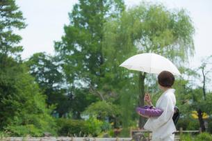 日傘をさす着物姿の女性の写真素材 [FYI02597041]