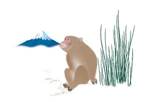 サルと富士山 イラストのイラスト素材 [FYI02597258]