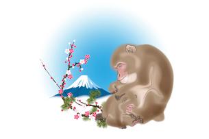 サルの親子と富士山と梅 イラストのイラスト素材 [FYI02597273]