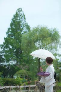 日傘をさす着物姿の女性の写真素材 [FYI02597378]