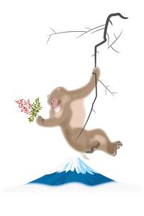 南天を持つサルと富士山 イラストのイラスト素材 [FYI02597448]