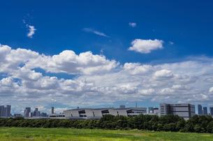 豊洲市場と青空の写真素材 [FYI02598811]