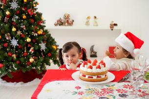 クリスマスケーキを食べる子供の写真素材 [FYI02603104]