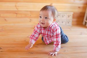 木の床でハイハイする赤ちゃんの写真素材 [FYI02607720]